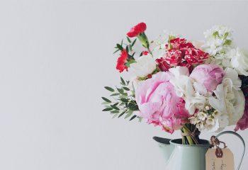 Живые растения в рабочих помещениях снижают уровень стресса