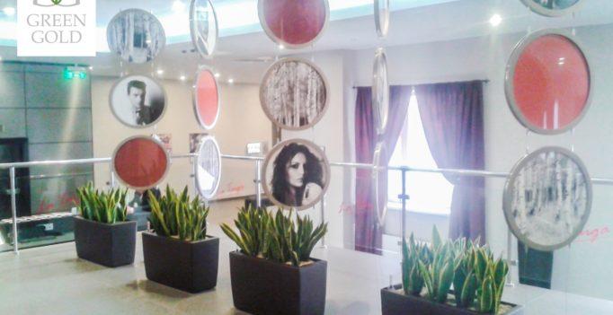 Озеленение гостиницы Mercure