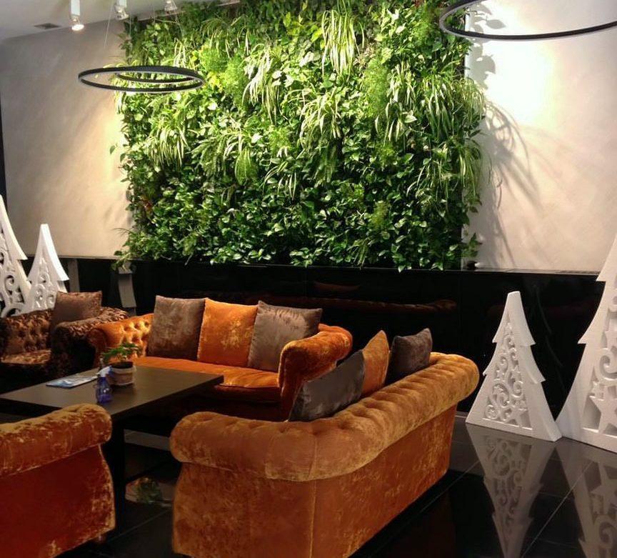 Обслуживание зеленой стены из живых растений
