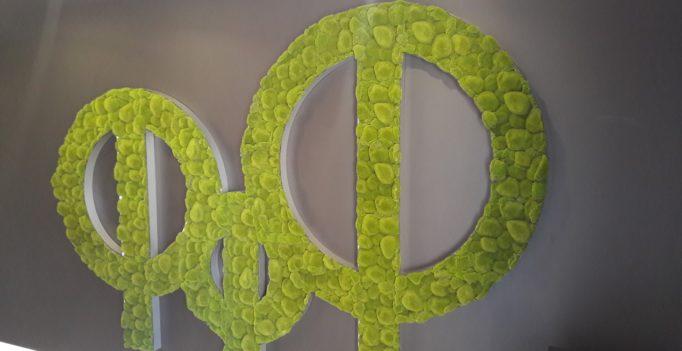 Логотип из искусственного мха для Меридиан Констракшн ЖК «Фамилия»