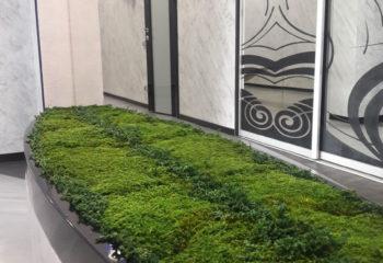 Зеленая вставка из стабилизированного плоского мха